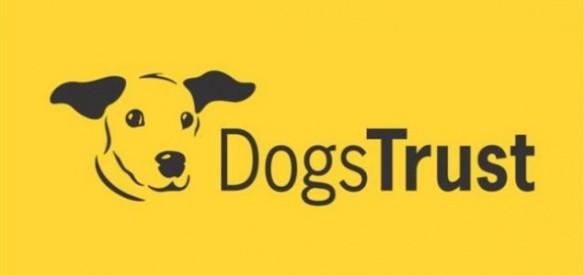 dogs_trust-635x300
